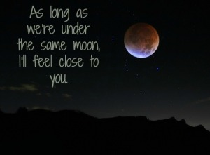 love-moon-photography-quote-Favim.com-572436